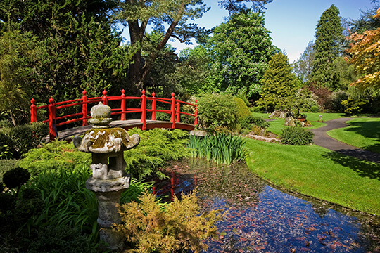 National Stud & Japanese Gardens